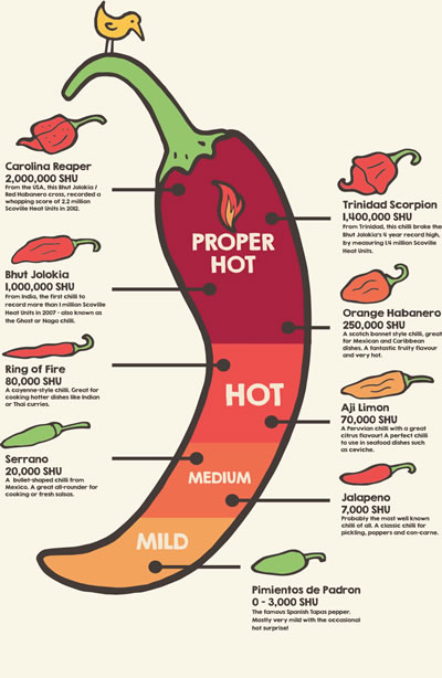 Chilliometer graphic