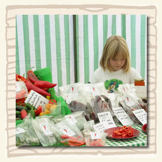 South Devon Chilli Farm at Ivybridge Farmers' market in the early days