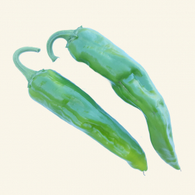 Guajillo chillies