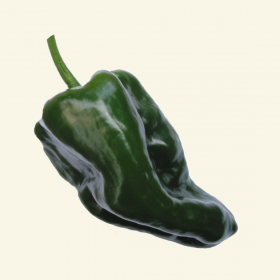 Poblano chilli seeds
