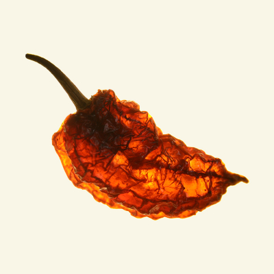 Dried Bhut Jolokia