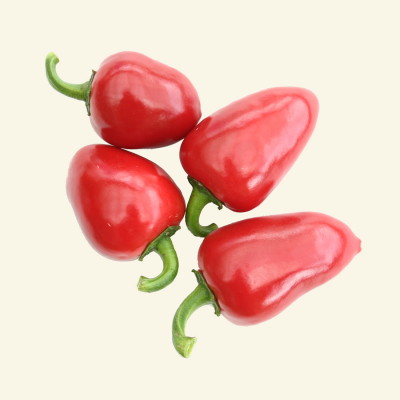 Large Red Cherry chilli seeds