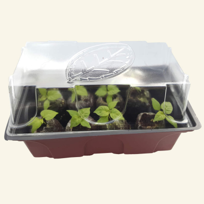 Propagator for jiffy plugs