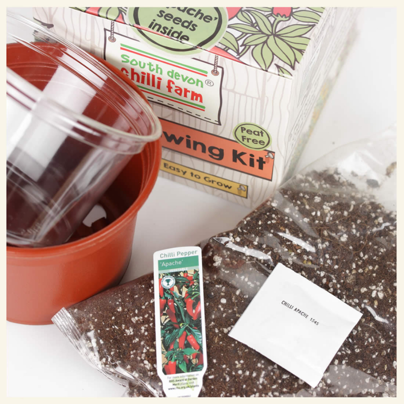 Chilli Growing Kit - contents